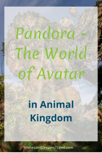 If you haven't made a trip to Disney World lately, now is the time to plan one!  Disney opened up Pandora - The World of Avatar