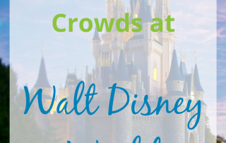 Tips to Avoid the Crowds at Walt Disney World