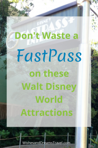 Don't Waste a FastPass on these Walt Disney World Attractions